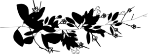 Logo Zéjel